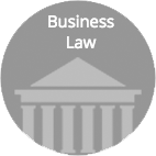 Business Law Representation